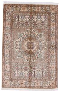6x4 gonbad design kashmir silk persian rug