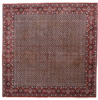 8ft 250cm square bidjar persian rug