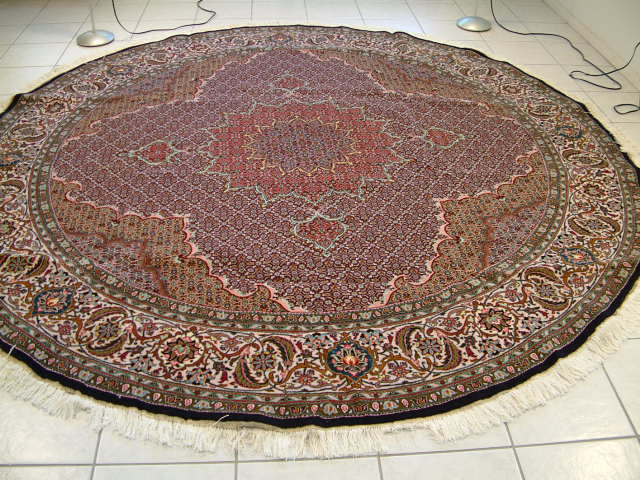 Persian rug client in Indiana