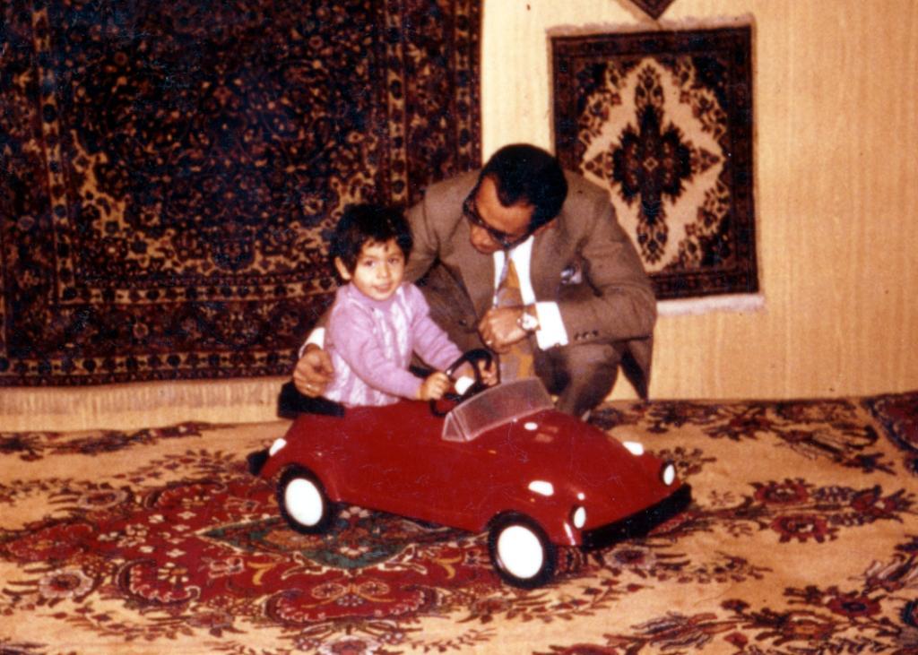 Persian rugs at MPrugs.com